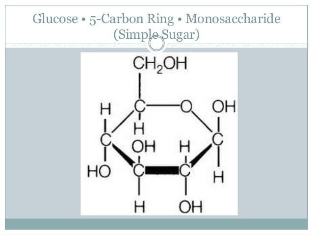 Comparing photosynthesis cellular respiration glucose 5 carbon ring monosaccharide simple sugar ccuart Images