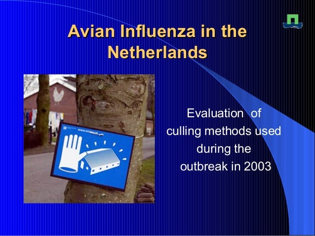 Avian Influenza in theAvian Influenza in the NetherlandsNetherlands Evaluation of culling methods used during the outbreak...