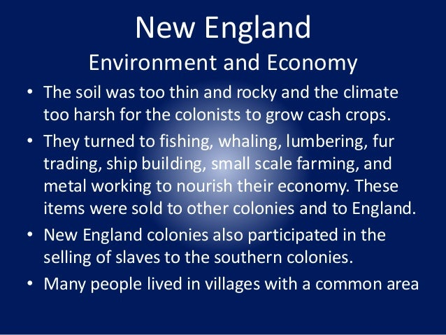 How the new england colonist altered the environment