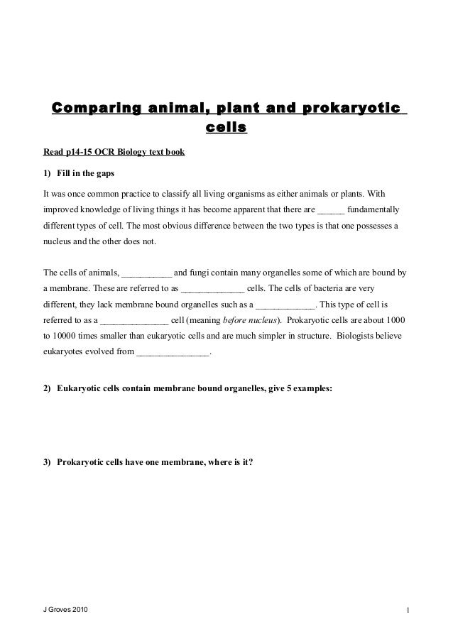 Comparing prokaryotic and eukaryotic cells – Prokaryotic and Eukaryotic Cells Worksheet