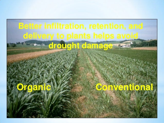 Comparison between Conventional and Organic farming