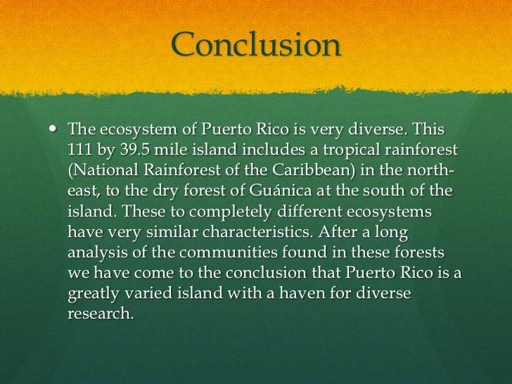 deforestation essay outline
