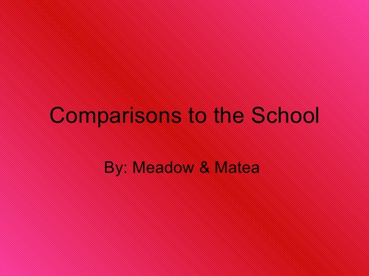 Comparisons to the School By: Meadow & Matea