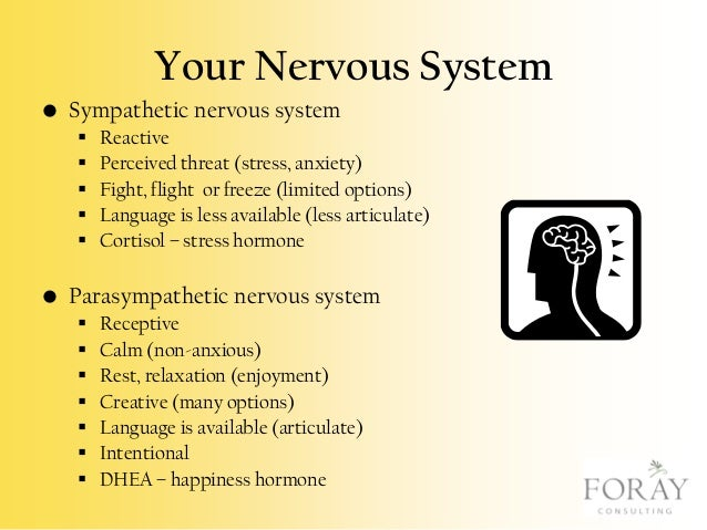 Your Nervous System • Sympathetic nervous system       Reactive Perceived threat (stress, anxiety) Fight, flight or f...