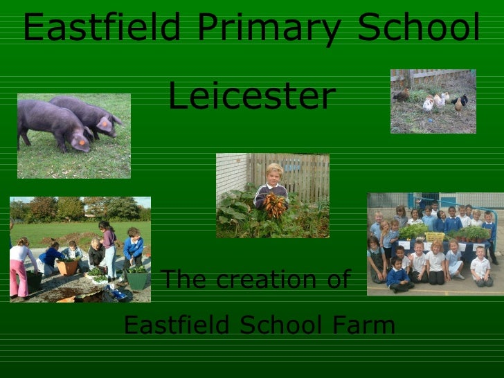 Eastfield Primary School Leicester The creation of  Eastfield School Farm