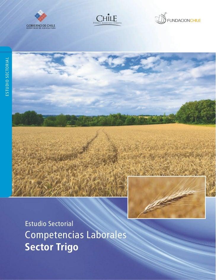 Estudio sectorial competencias laborales sector trigo for Competencias del ministerio del interior