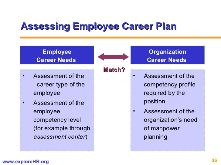 Sample Career Assessment