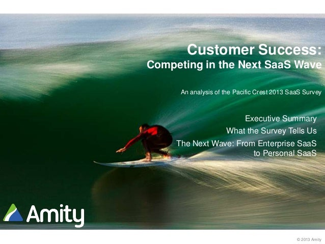 © 2013 Amity Customer Success: Competing in the Next SaaS Wave An analysis of the Pacific Crest 2013 SaaS Survey Executive...