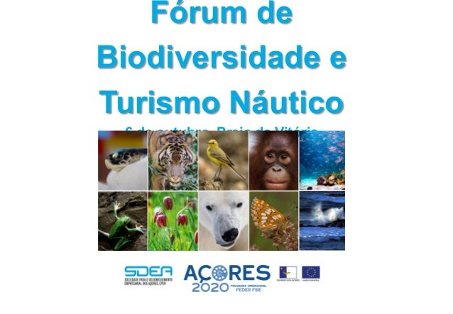 Fórum de Biodiversidade e Turismo Náutico 6 de outubro, Praia da Vitória