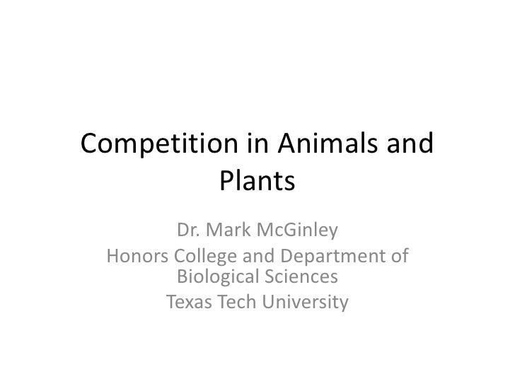 Competition in Animals and Plants<br />Dr. Mark McGinley<br />Honors College and Department of Biological Sciences<br />Te...