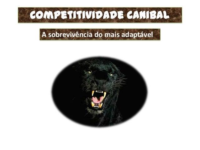 Competitividade Canibal A sobrevivência do mais adaptável