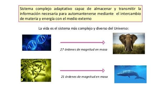 Sistema complejo adaptativo capaz de almacenar y transmitir la información necesaria para automantenerse mediante el inter...