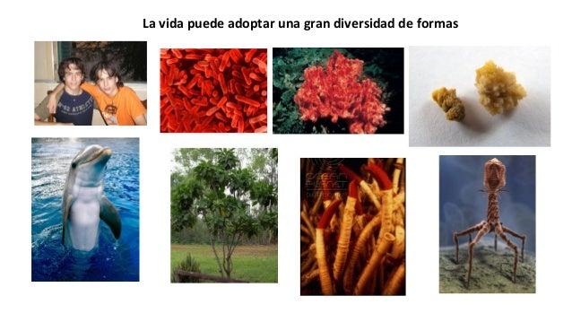 La vida puede adoptar una gran diversidad de formas