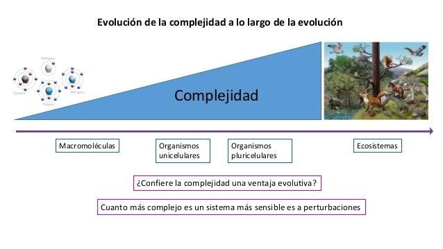 Macromoléculas Organismos unicelulares Organismos pluricelulares Ecosistemas Evolución de la complejidad a lo largo de la ...