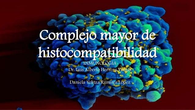 Complejo mayor de histocompatibilidad INMUNOLOGÍA Dr. Luis Alberto Herrera Vargas  Daniela Yelitza Ramirez López