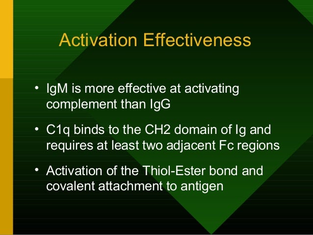 Activation Effectiveness • IgM is more effective at activating complement than IgG • C1q binds to the CH2 domain of Ig and...