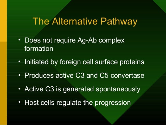 The Alternative Pathway • Does not require Ag-Ab complex formation • Initiated by foreign cell surface proteins • Produces...