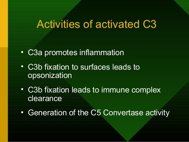 Activities of activated C3 • C3a promotes inflammation • C3b fixation to surfaces leads to opsonization • C3b fixation lea...