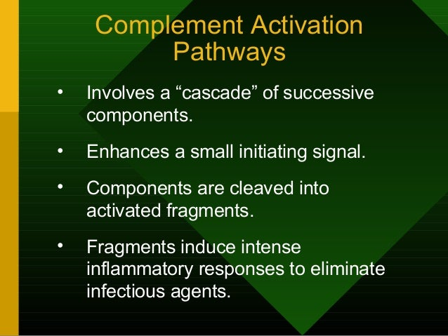 """Complement Activation Pathways • Involves a """"cascade"""" of successive components. • Enhances a small initiating signal. • Co..."""