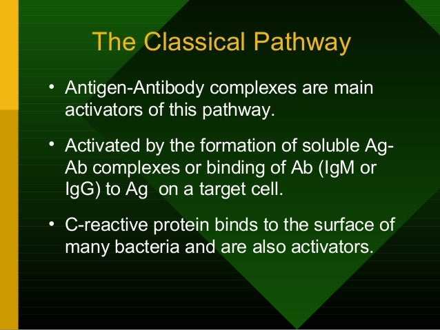 The Classical Pathway • Antigen-Antibody complexes are main activators of this pathway. • Activated by the formation of so...