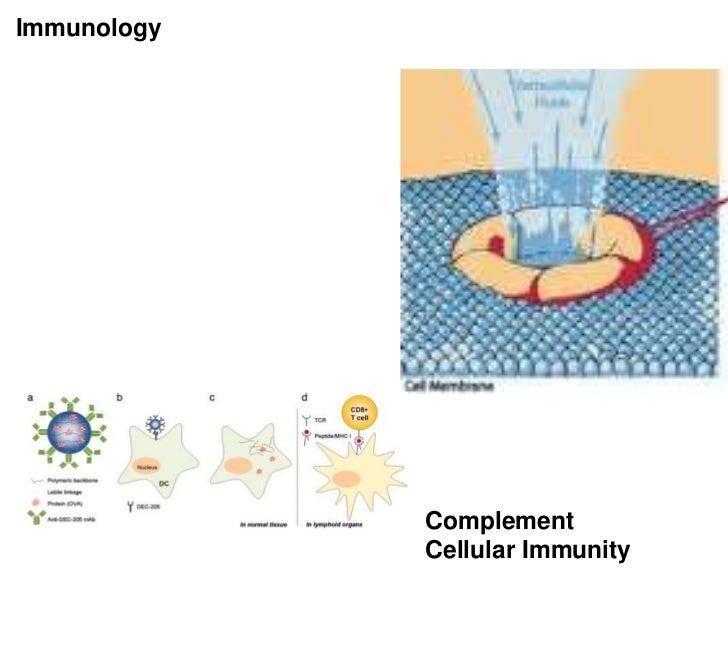 Immunology             Complement             Cellular Immunity