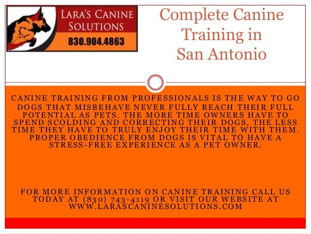 Complete Canine                            Training in                            San AntonioCANINE TRAINING FROM PROFESSI...