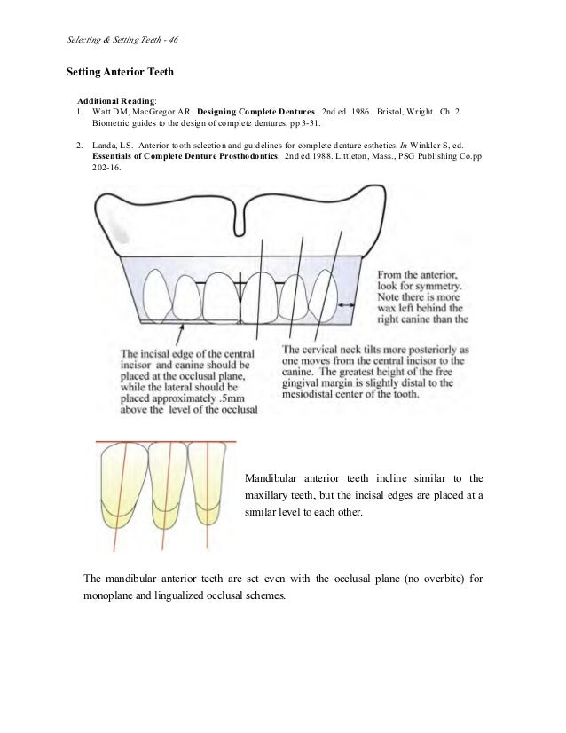 Labelling Teeth Manual Guide