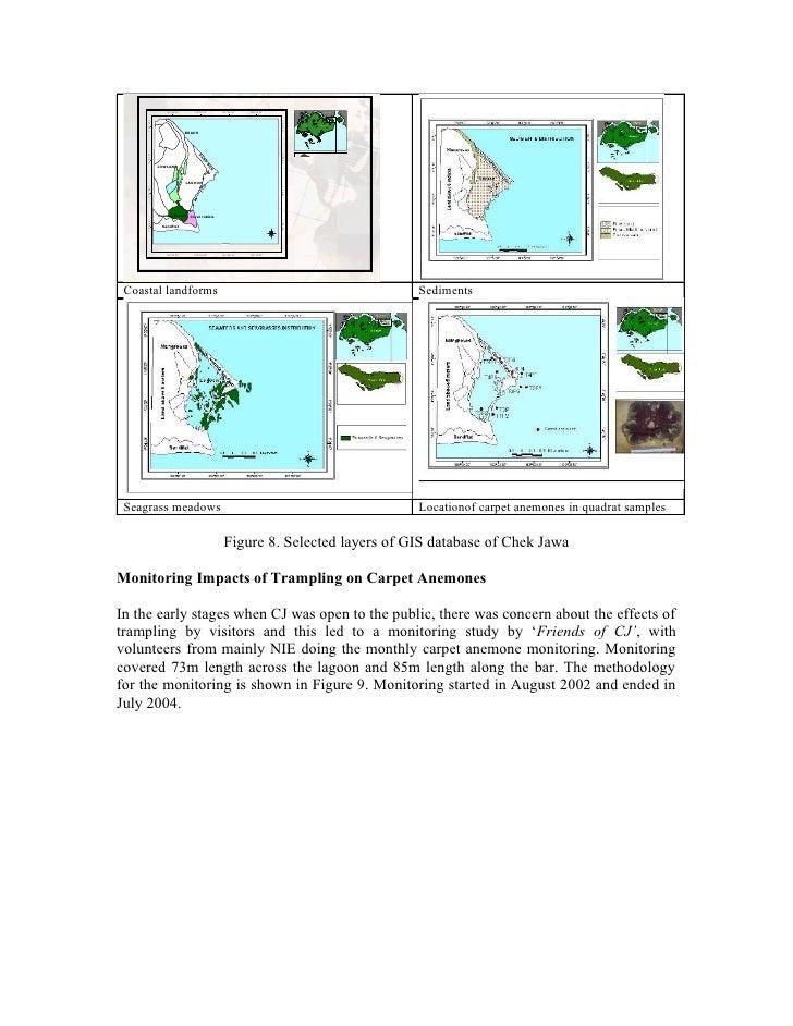 declining marine biodiversity essay