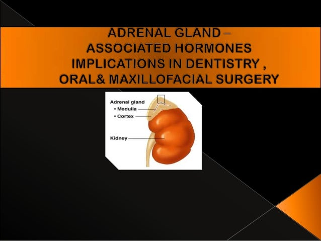 Adrenal gland anatomy, embryology, histology.  Biosynthesis, physiological and pharmacological actions of hormones of adr...