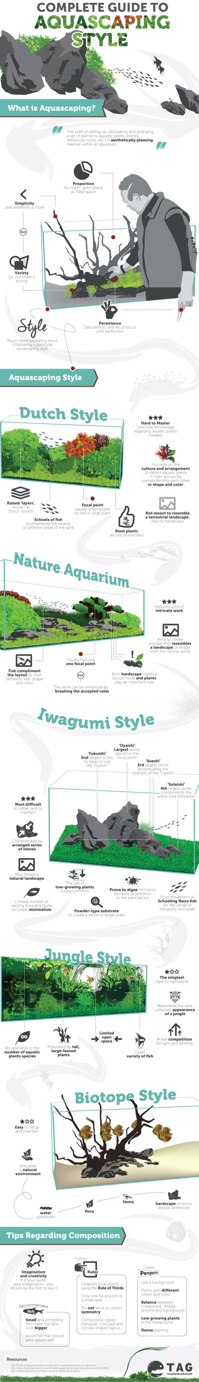 Complete Guide to Aquascaping Style