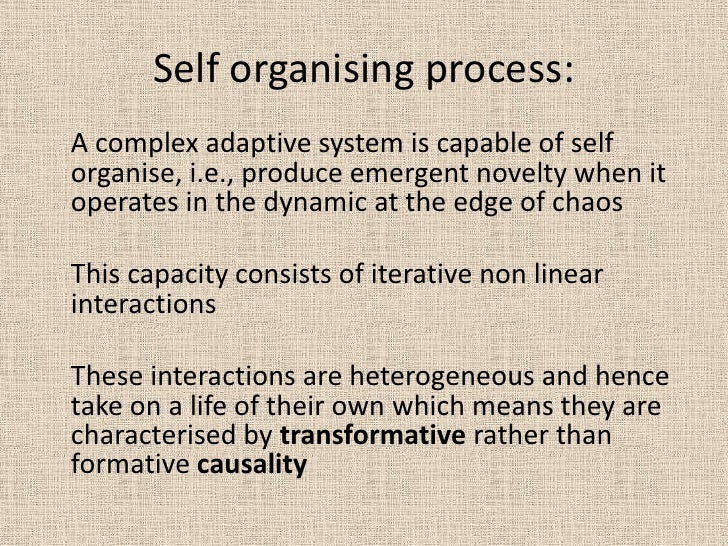Self organising process:<br />A complex adaptive system is capable of self organise, i.e., produce emergent novelty when ...