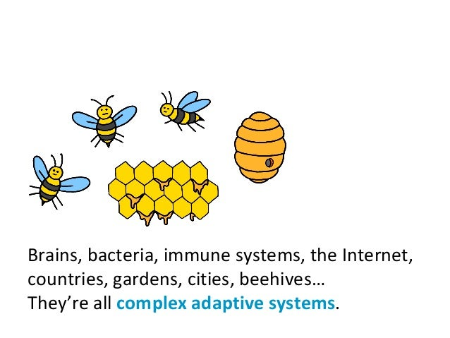 Brains, bacteria, immune systems, the Internet, countries, gardens, cities, beehives… They're all complex adaptive systems.