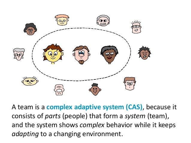 A team is a complex adaptive system (CAS), because it consists of parts (people) that form a system (team), and the system...