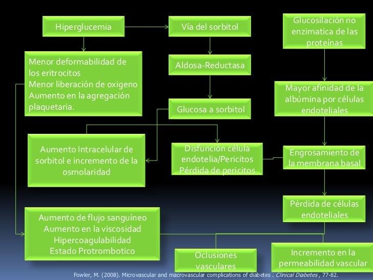 Complicaciones microvasculares Diabetes mellitus