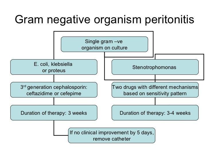 Gram negative organism peritonitis Single gram –ve  organism on culture E. coli, klebsiella  or proteus Stenotrophomonas  ...
