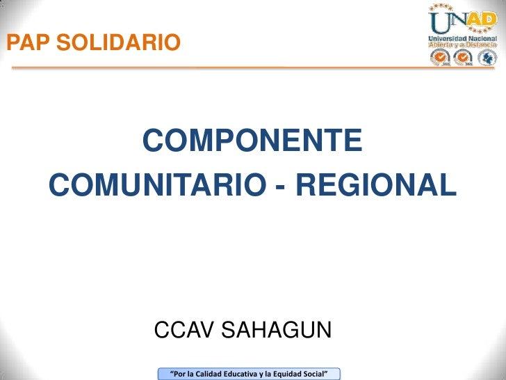 PAP SOLIDARIO<br />COMPONENTE <br />COMUNITARIO - REGIONAL<br />CCAV SAHAGUN<br />