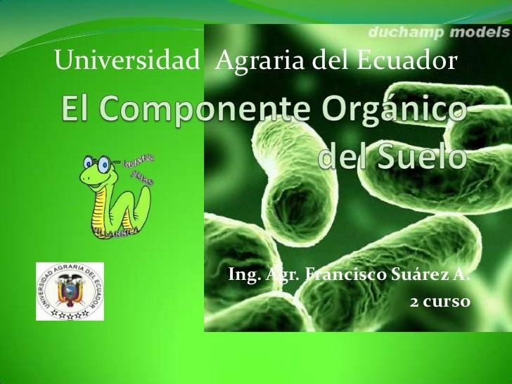 El Componente Orgánico del Suelo<br />Universidad  Agraria del Ecuador<br />Ing. Agr. Francisco Suárez A.<br />2 curso<br />