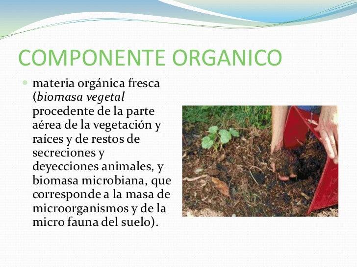 Componente organico del suelo for Que elementos conforman el suelo