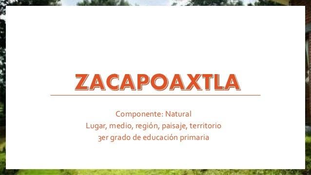 Componente: Natural  Lugar, medio, región, paisaje, territorio  3er grado de educación primaria