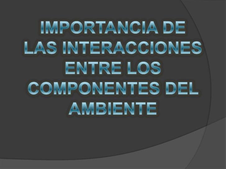 IMPORTANCIA DE LAS INTERACCIONES <br />ENTRE LOS COMPONENTES DEL AMBIENTE<br />