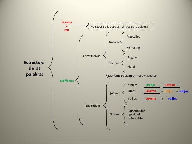 Lexema                o            Portador de la base semántica de la palabra               raíz                         ...