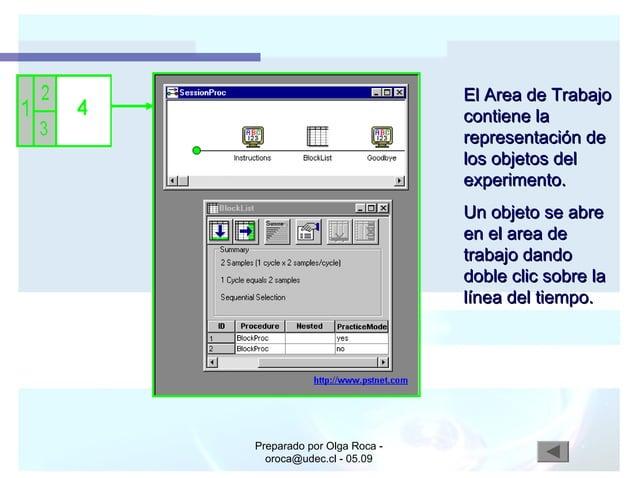 Preparado por Olga Roca - oroca@udec.cl - 05.09 El Area de TrabajoEl Area de Trabajo contiene lacontiene la representación...