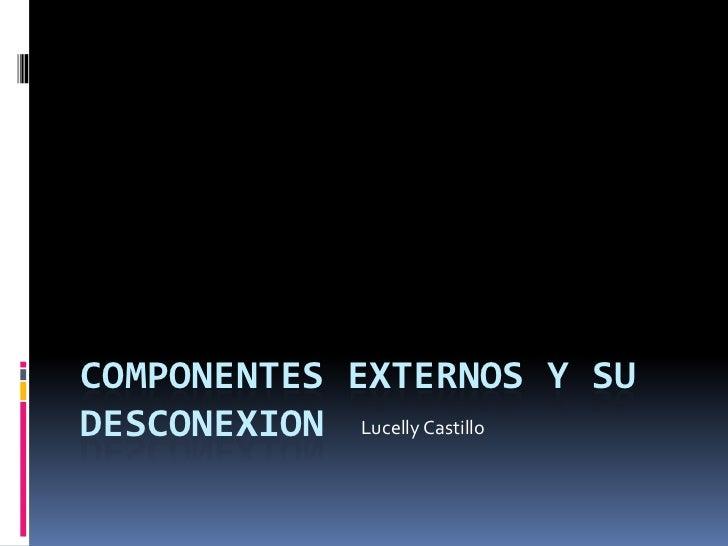 COMPONENTES EXTERNOS Y SUDESCONEXION Lucelly Castillo
