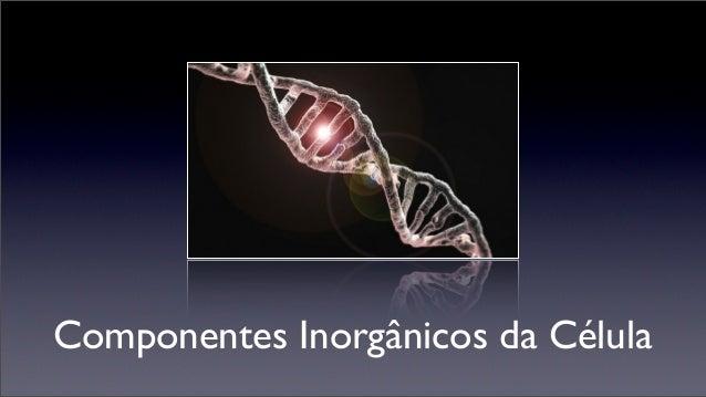 Componentes Inorgânicos da Célula