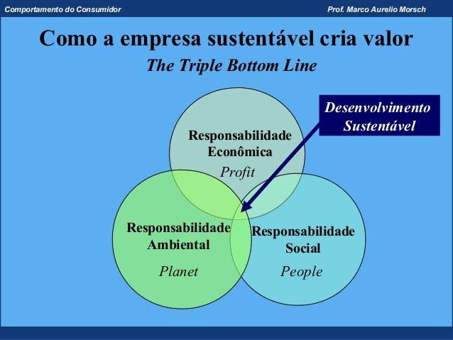 Comportamento do Consumidor                                   Prof. Marco Aurelio Morsch        Como a empresa sustentável...