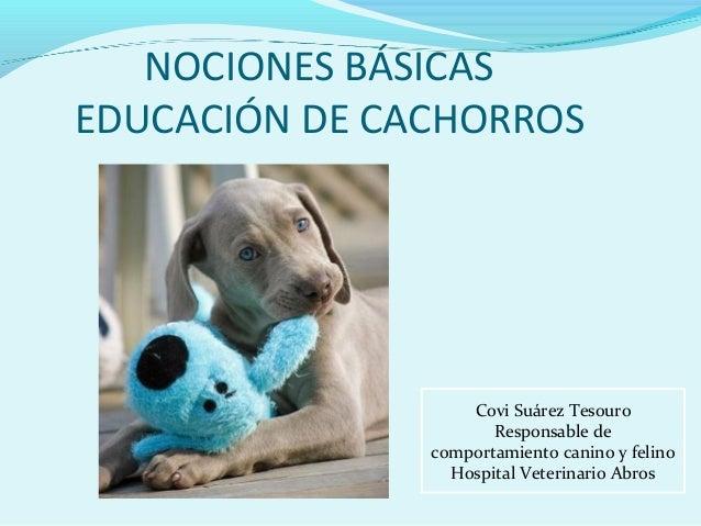 NOCIONES BÁSICAS EDUCACIÓN DE CACHORROS  Covi Suárez Tesouro Responsable de comportamiento canino y felino Hospital Veteri...