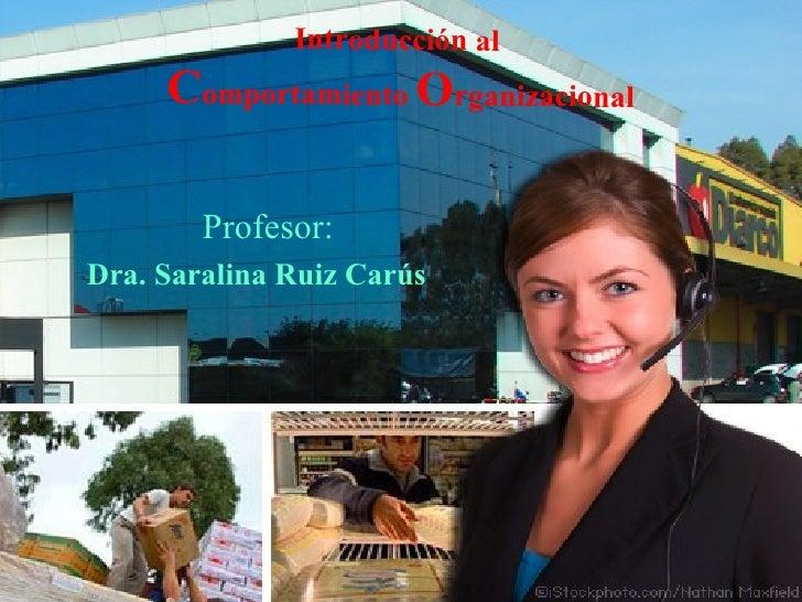 Introducción al  C omportamiento  O rganizacional Profesor:  Dra. Saralina Ruiz Carús