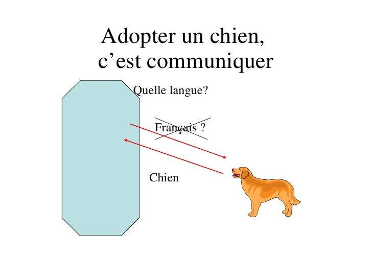 Adopter un chien,  c'est communiquer Français ? Chien ? Quelle langue?
