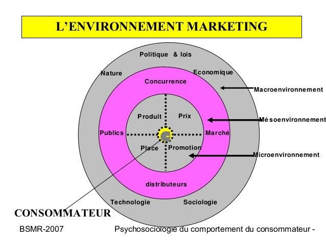 L'ENVIRONNEMENT MARKETING                       Politique & lois            Nature                        Economique      ...