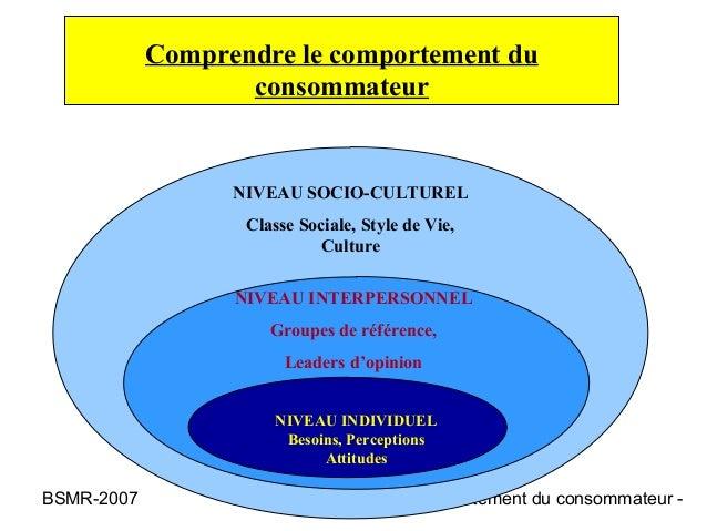 Comprendre le comportement du                   consommateur                  NIVEAU SOCIO-CULTUREL                   Clas...